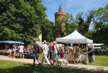 Photo of Bernau: Tag der Vereine, Kunst- und Handwerkermarkt, Voting Day
