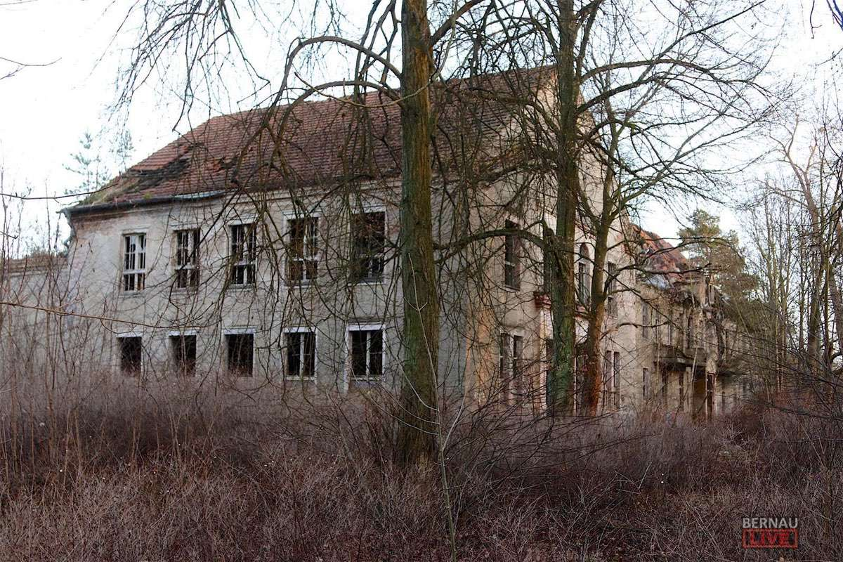 Baustelle Zepernicker Chaussee Friedenstal Bernau LIVE0000