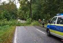 Photo of Sechs Feuerwehreinsätze zum gestrigen Herbststurm in Bernau