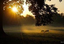 Photo of Guten Morgen aus Bernau und willkommen in der neuen Woche