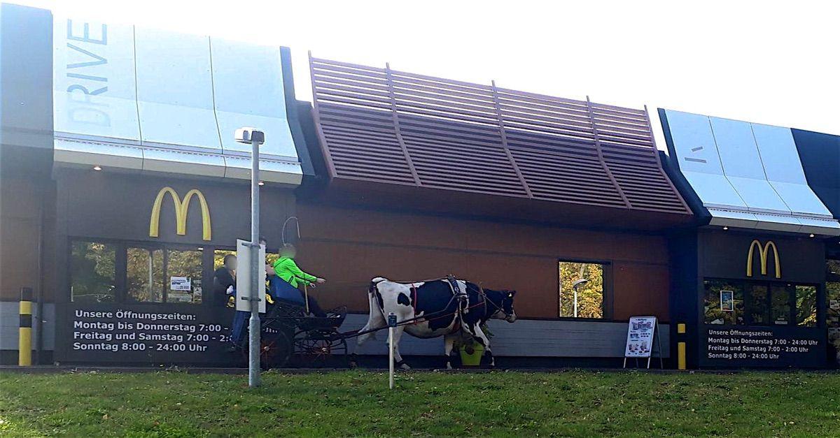 Kuh Betty in Bernau Bernau LIVE 0000