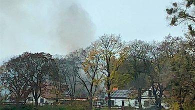Photo of Brand an der Schönower Chaussee sorgte für Einsatz der Feuerwehren Bernau