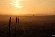 Photo of Kleine Schritte, um Bernau auf den Klimawandel vorzubereiten