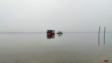 Photo of Polizei und Feuerwehren suchen nach vermisster Person im Grimnitzsee