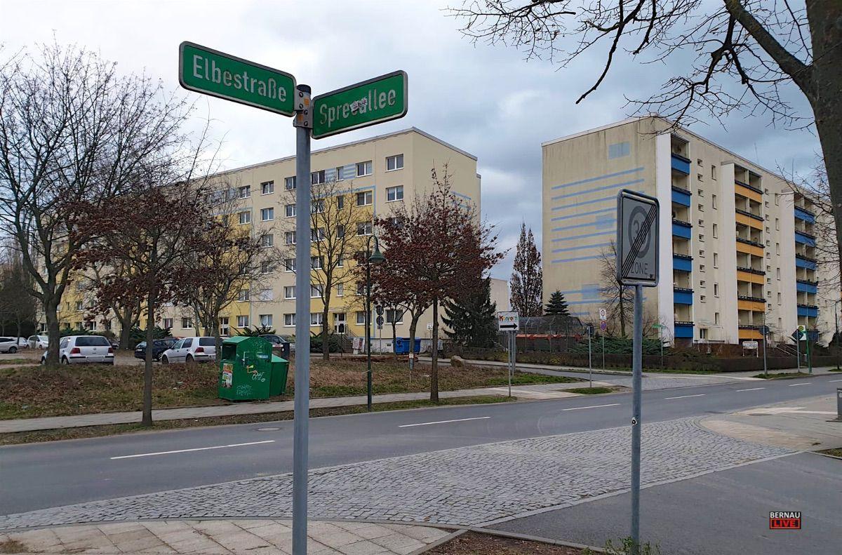 Spreeallee Bernau Friedenstal Bernau LIVE 0