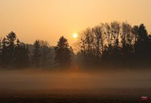 Photo of Guten Morgen aus Bernau und allen ein schönes Wochenende
