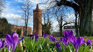 Photo of Frühling in Sicht – Euch ein schönes Wochenende in und um Bernau