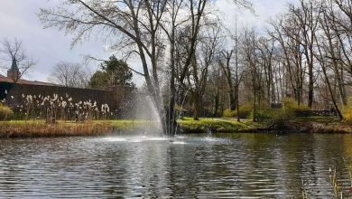 Photo of Springbrunnen im Schwanenteich hat seinen Winterschlaf beendet