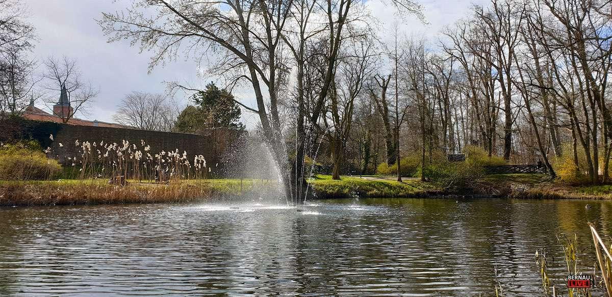 Springbrunnen am Schwannenteich Bernau Bernau LIVE 0000