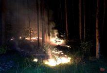 Photo of Feuerwehr Bernau: Wieder einmal brennt es im Wald nahe Lobetal