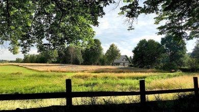 Photo of Bernau LIVE wünscht ein schönes Wochenende zum Sommeranfang