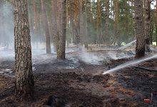 Photo of Bernau: Feuerwehr löschte Waldbrand zwischen Ladeburg und Lanke