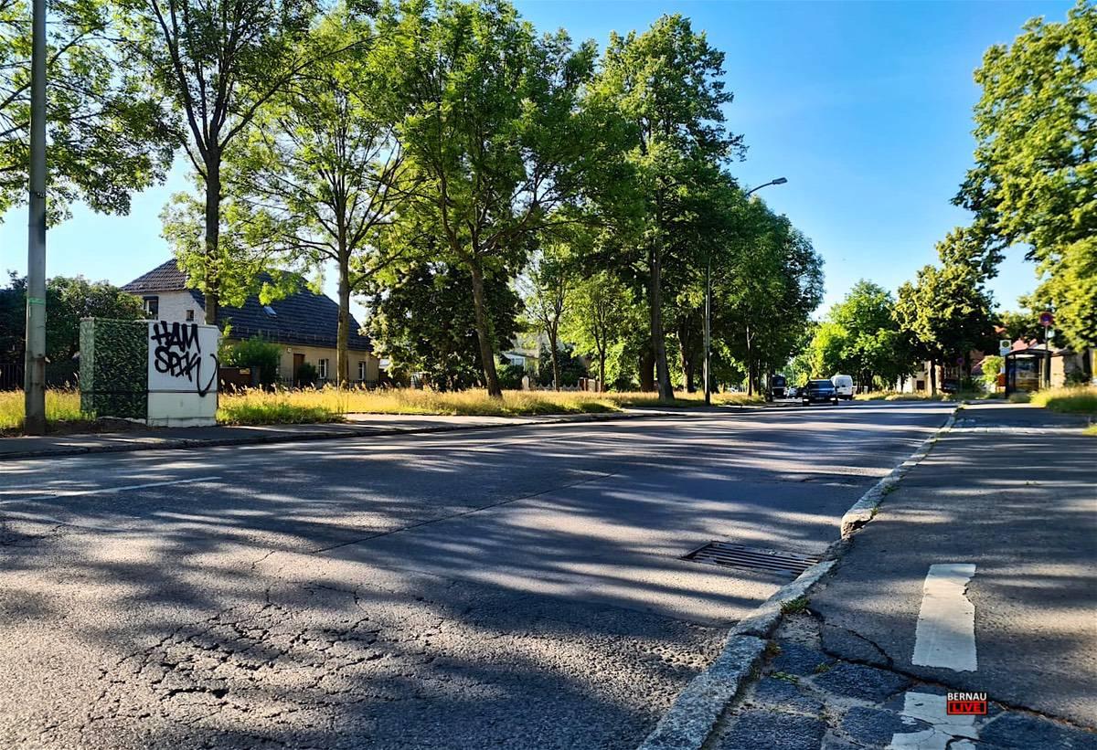 Malchow, Dorfstrasse, B2, Bernau, Bernau LIVE