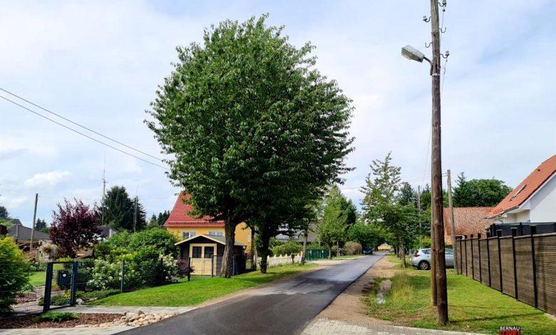 Photo of Straßenbeleuchtung in Bernau – Friedenstal wird erneuert
