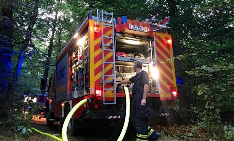 Photo of Bernau: Vier Brandstellen am Donnerstagabend im Wald bei Lobetal